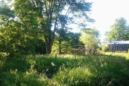 Bordenwood Grove  - Henderson
