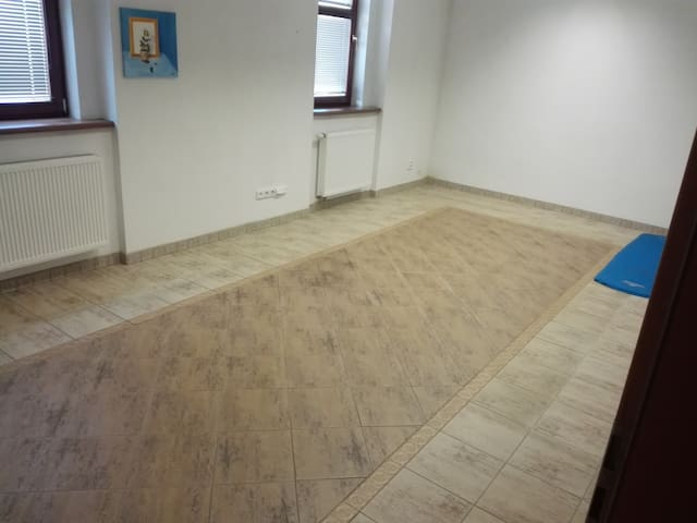 A big room in a small house - Beroun - House