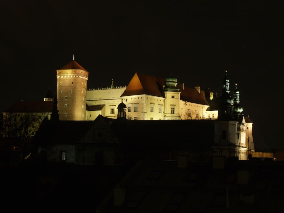 Wawel Castle view from the balcony