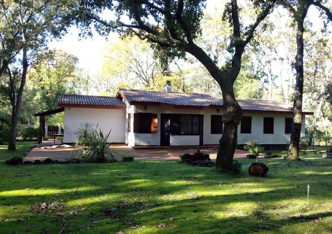 La casa nel bosco di Circe - Selva Piana-baia D'argento