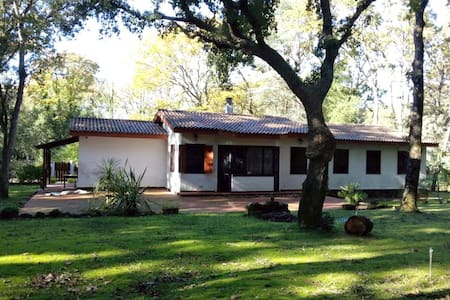 La casa nel bosco di Circe - Selva Piana-baia D'argento - Casa de campo