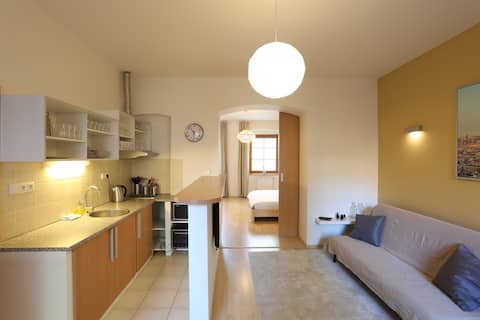 Apartment with bedroom [A4] Residence Caesar