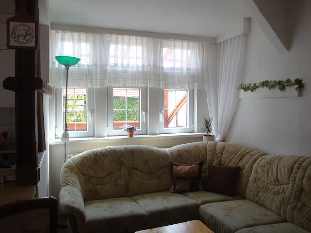 "Fewo ""Petersberg"" - Erfurt - Apartament"