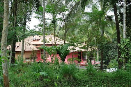 Stay in a village farm house and enjoy nature - Koleri - Bed & Breakfast