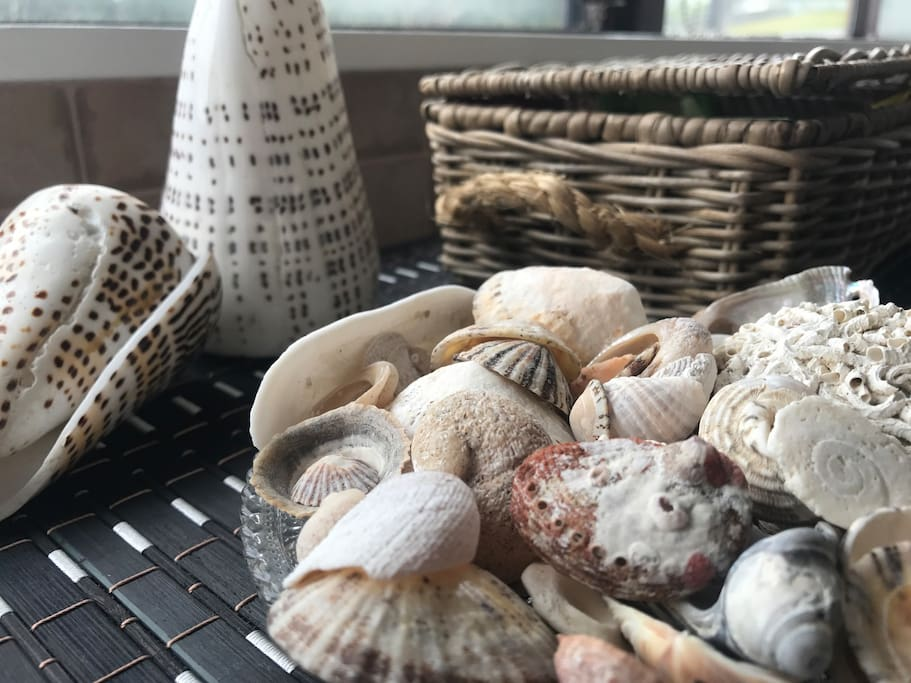Wander the beach and collect shells or just chill out.