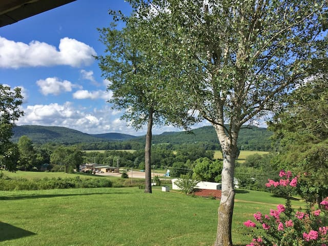 View from the front porch on a summer morning.