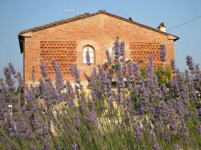 Position strategique, près de Lucca - Capannori - House