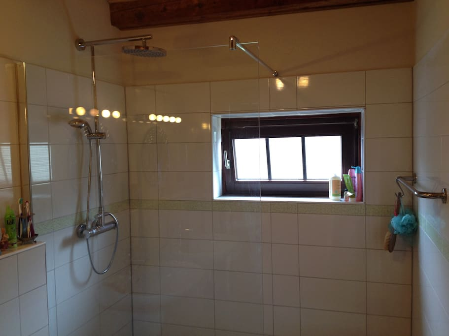 SHARED bathroom with monsoon walk-in shower and double sink.
