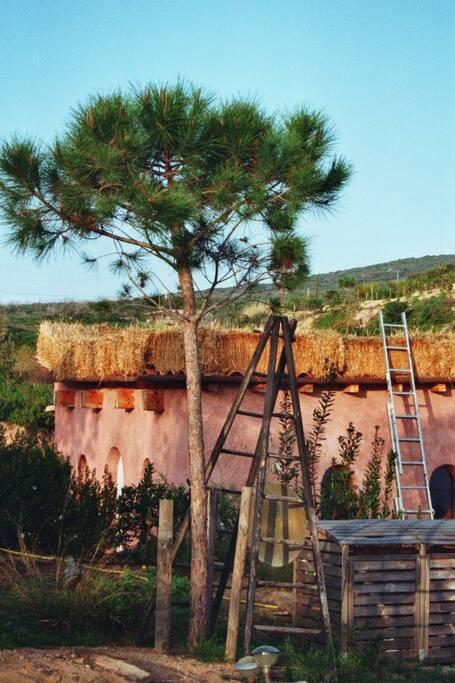 Le toit en paille