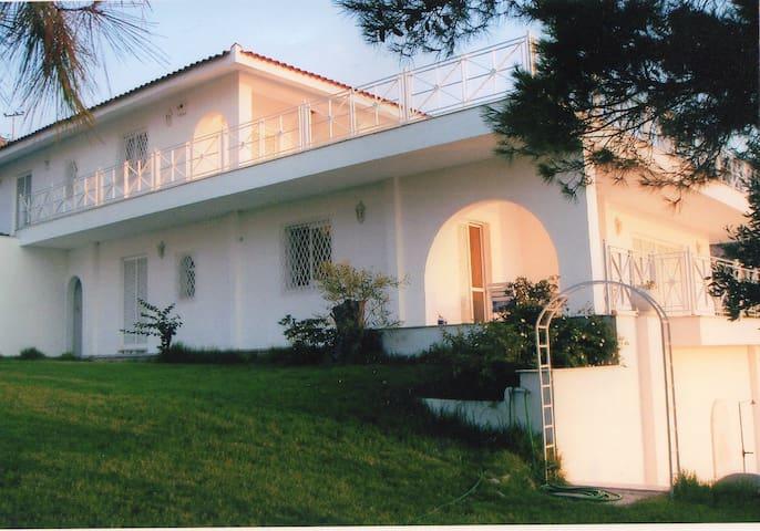Lisianthos Villa - Luxury seafront - อิสต์ อัตติกา