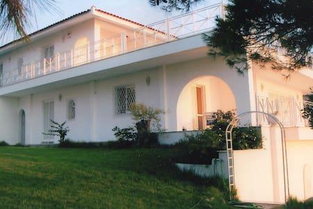 Lisianthos Villa - Luxury seafront - Attyka Wschodnia - Willa