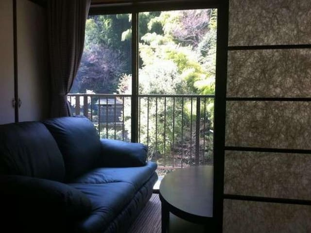 Traditional Japanese Ryokan Hotel in Hakone with Hot Springs, Breakfast and Dinner Included・モダン和洋室