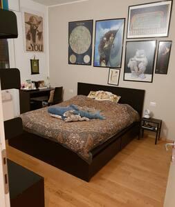 Bella stanza, quartiere comodo