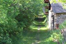 Chemin vers l'abbaye