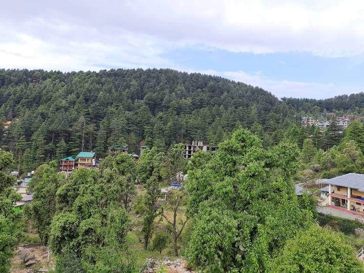 BHAGSU HOME STAY
