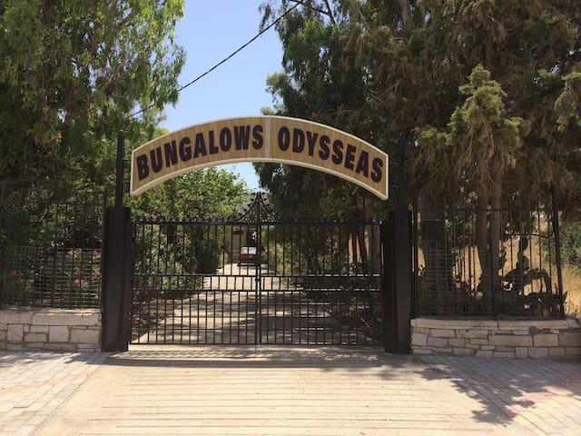 Bungalows Odysseas - Matala - Bungalow