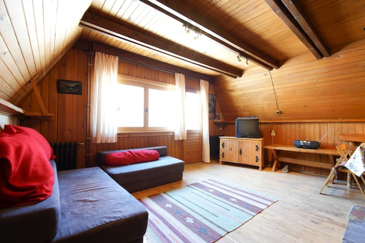 Ski-To-Door Chalet - Jahorinka