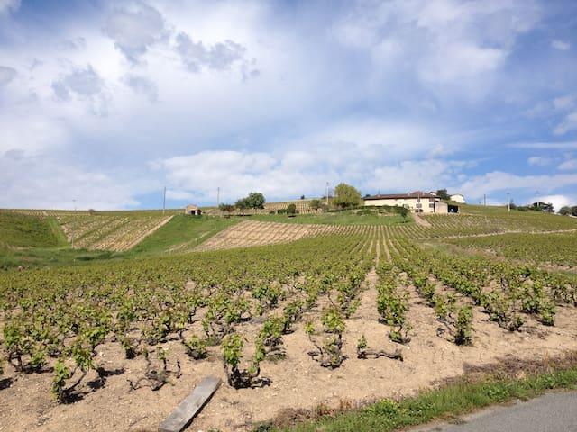 La Mécanique des Vins - Chiroubles - Ubytovna