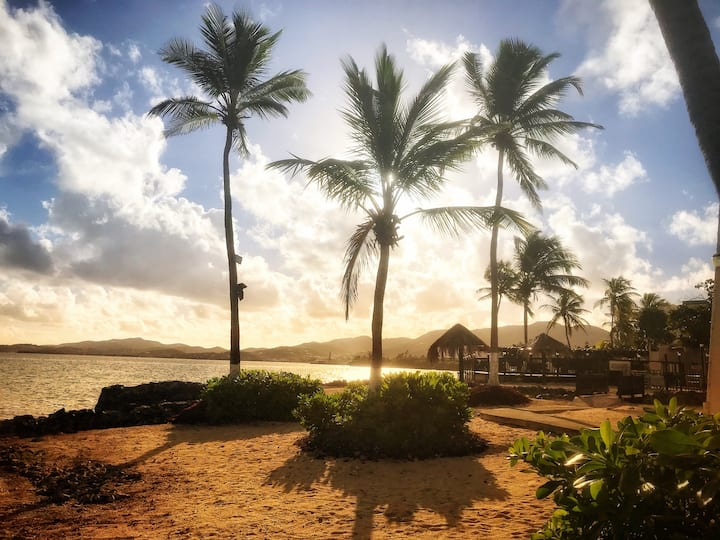 Paradise View- Private Beachfront Condo