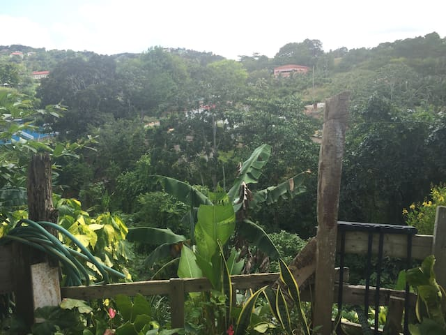 Mandeville Home and Garden - Mandeville  - Casa