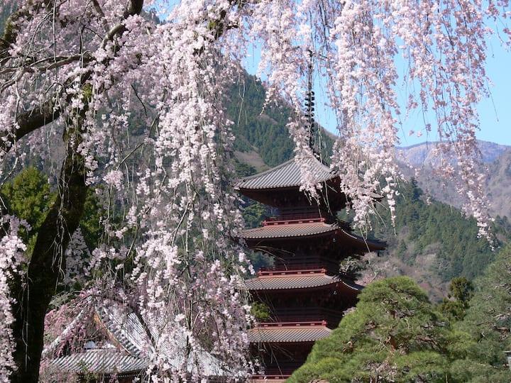 [TEMPLE HOTEL]Japanese Room and  buddhism celemony