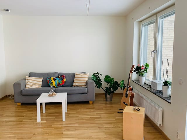 Cosy flat close to the city center