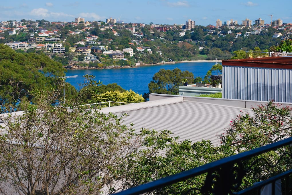 Views of Middle Harbour