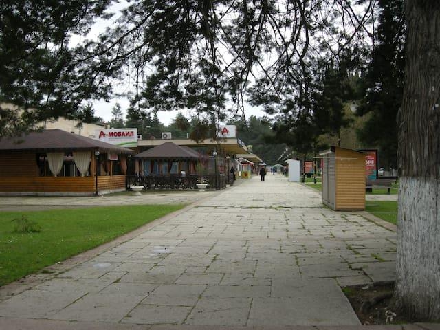 Зимний отдых на курорте Пицунда - Bichvinta - Apartament