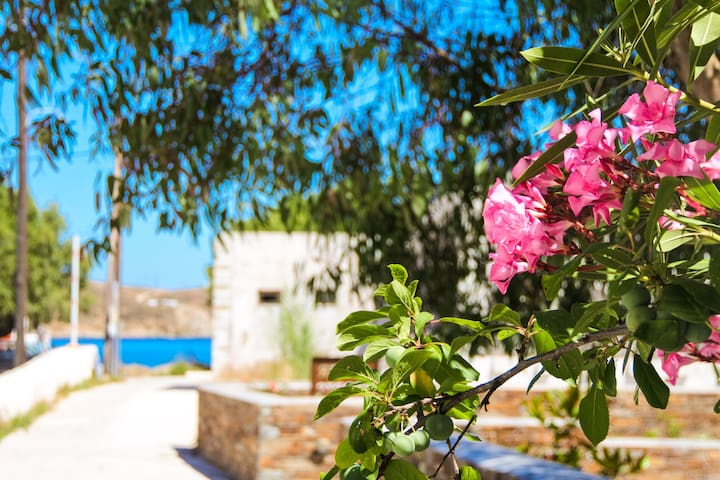See Serifos relax economically next to the beach - Serifos - Apartamento