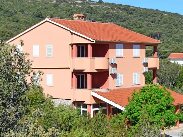 Holiday apartment Rajka in Dugi otok