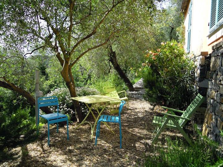 Studio con giardino - CITR 008052-CAV-0007