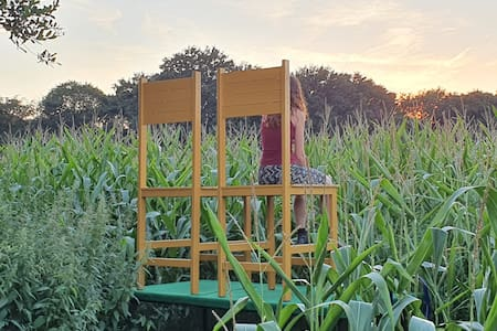 TINY HOUSE:OFF-GRID/IN CORN  SCHOOTEINDHOEVE