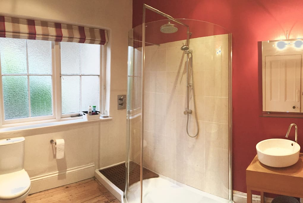 Bathroom with walk in shower, toilet, basin and cupboards