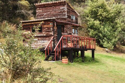 Yupi: Amazing countryside Tiny House
