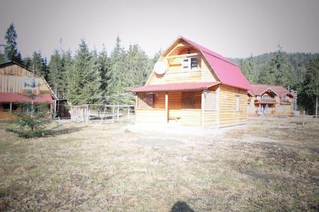 Деревянный двухэтажный дом . - House