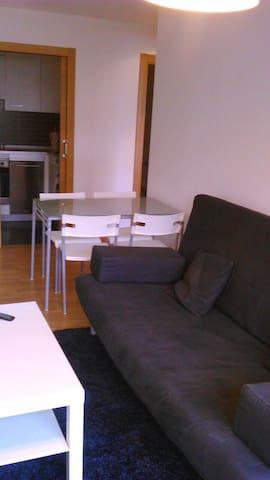 Coqueto apartamento - Ramales de la Victoria - Daire