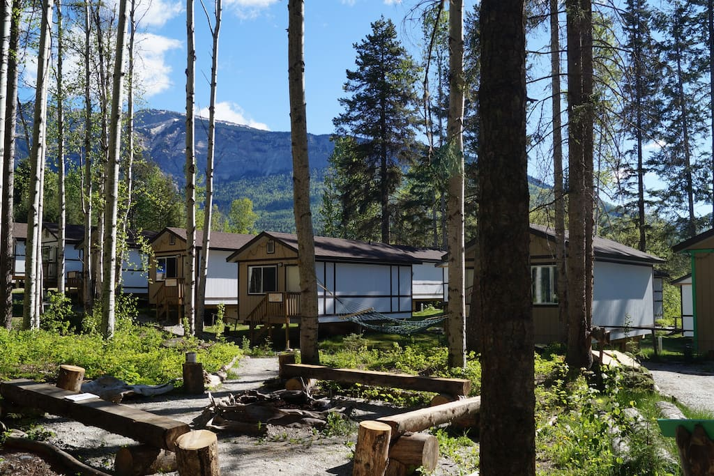 Mountain View Cabins Golden Cabin D Cottages For Rent In