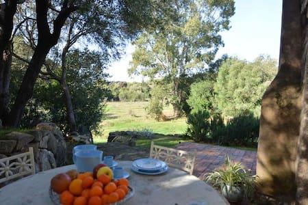 Casa tipica Gallurese - Cannigione - Talo
