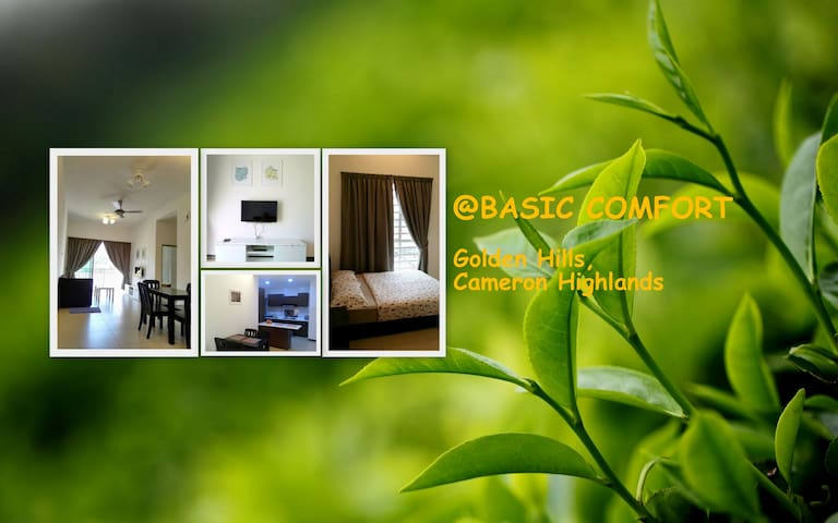 @BASIC COMFORT, Golden Hills