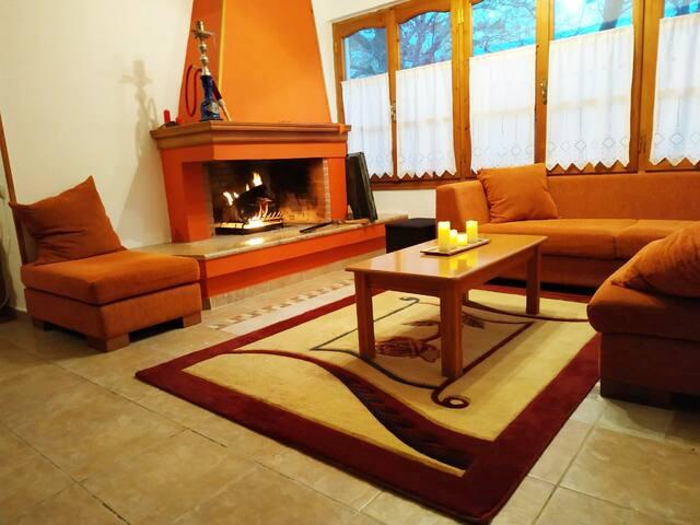 BEAUTIFUL AND COMFORTABLE HOUSE IN VIZITSA PELION