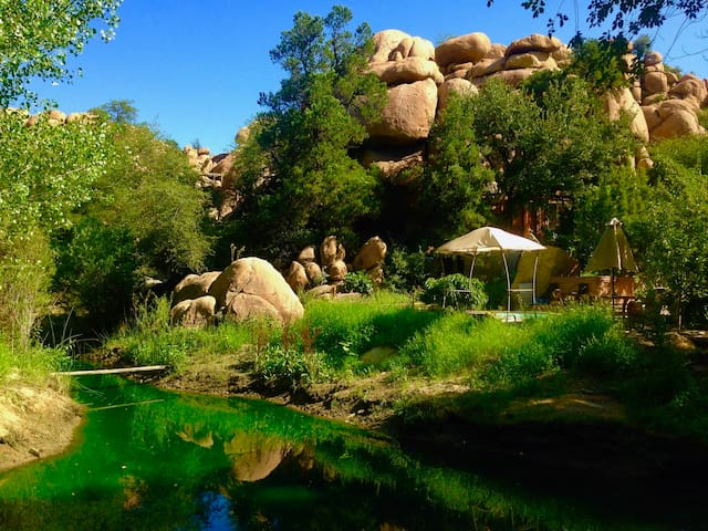 Below the Cave Castle this seasonal pond is home to ducks, frogs and beautiful birds and as an oasis for pumas, coyotes, bobcats, javelina, deer, etc. Look carefully, do you see the line of the blue pool? The Treehouse in the cliff is also available.