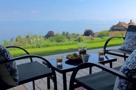 Stunning lake view / Vue panoramique lac Léman