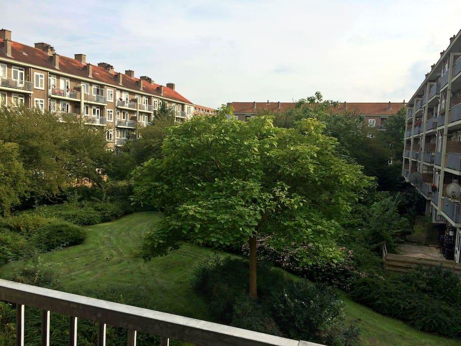 Private room appartamenti in affitto a amsterdam noord for Appartamenti in affitto amsterdam