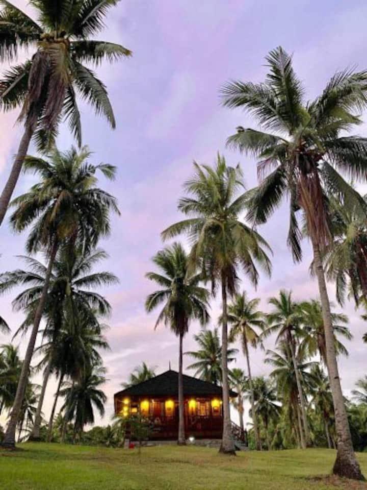 BAHAY TRINIDAD Bufi Farm, LaiYa, San Juan Batangas