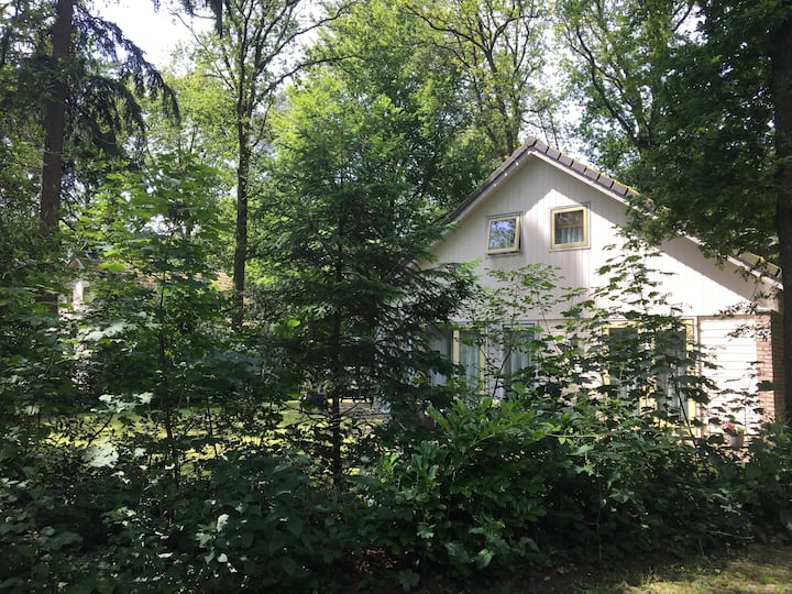 Prachtig modern boshuis met sauna en riante tuin