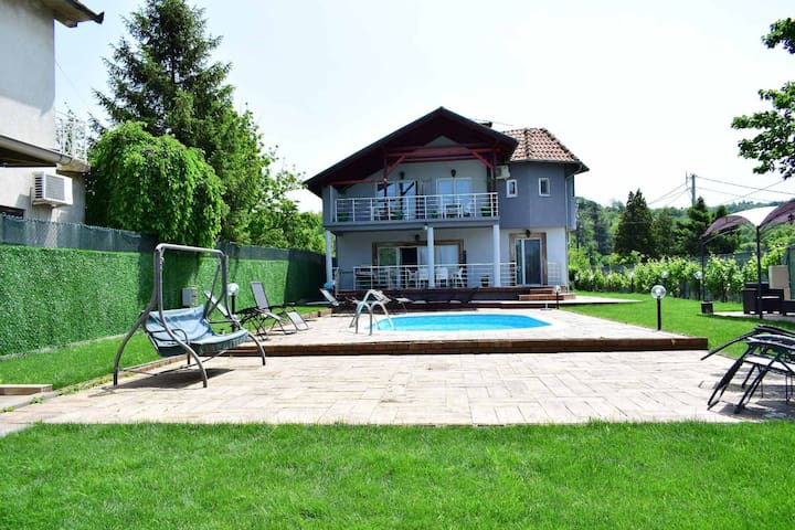 Private Luxury Danube Vila Mila, pool,sleeps 15