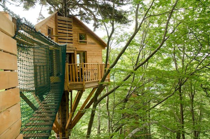 Nuits de Cimes - La cabane du bois Mauret