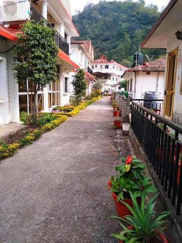 View of Walking track outside cottage
