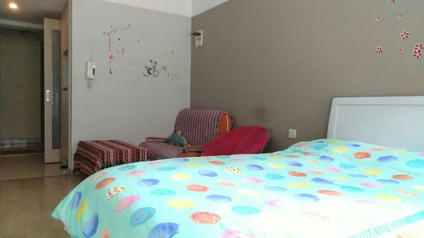 温馨一居室,独立阳台洗手间,出入便捷,安全物管,靠韶山南路铁道学院 - Changsha - Daire
