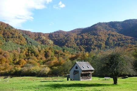 Les chalets de la forêt d'Issaux - Osse-en-Aspe - Chalet